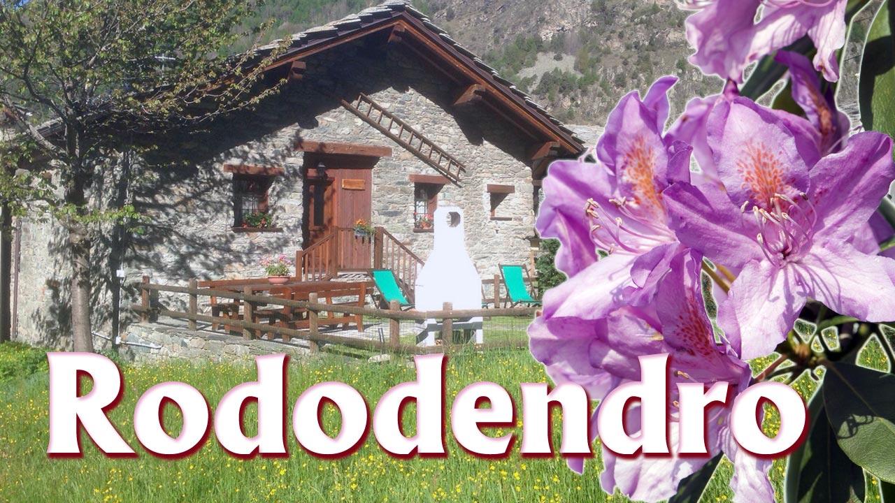 Casa Ideale Per 3 Persone appartamento vacanza valle d'aosta con giardino e barbecue